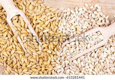 Barley seed or barley grains and pearl barley - CloseUp. #653281441