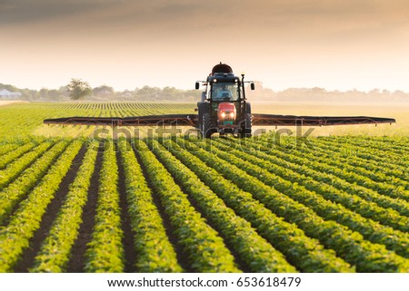 Tractor spraying pesticides on soybean field  with sprayer at spring #653618479
