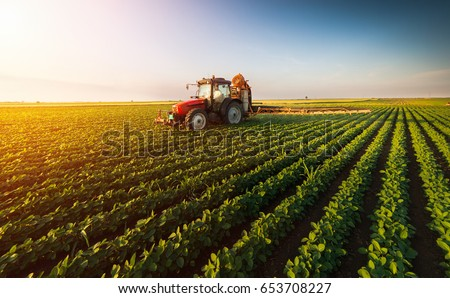 Tractor spraying pesticides on soybean field  with sprayer at spring Royalty-Free Stock Photo #653708227