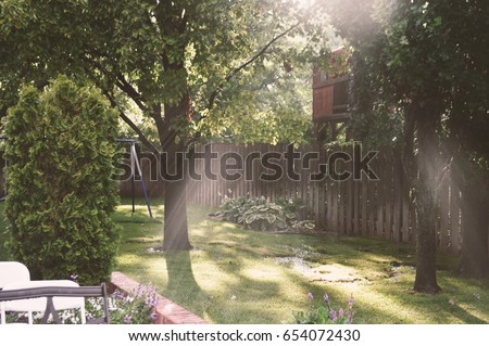 Green Backyard with Rays of Sunlight #654072430