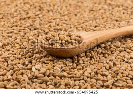 Spelt grain (dinkel wheat) on a spoon and background #654095425