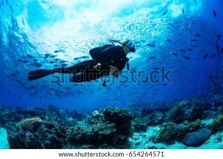Girl scuba diver diving on tropical reef with blue background and reef fish #654264571