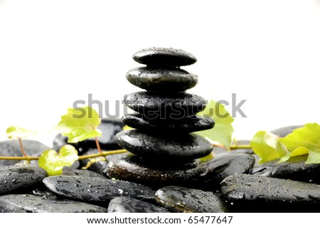 branch green ivy with stones stack in balance #65477647