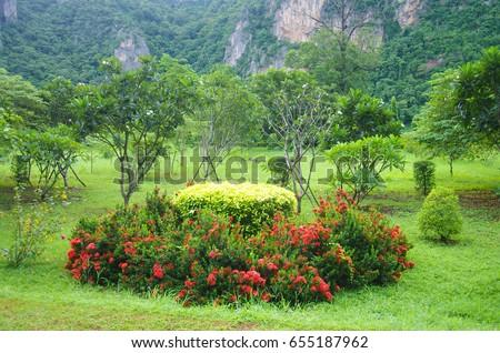 Beautiful garden in UTHAI THANI PROVINCE, THAILAND #655187962