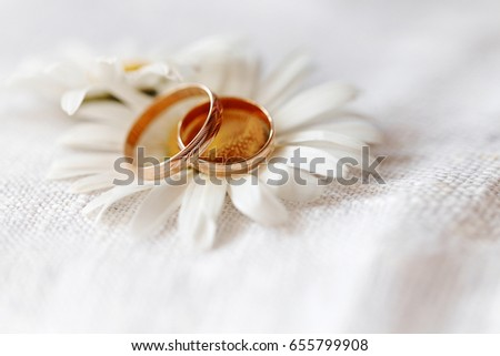 wedding rings with wildflowers daisies. The concept of weddings and proposals of marriage to nature #655799908