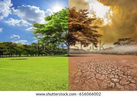 A global warming concept image showing the effect of arid land with tree changing environment, Concept of climate change. Royalty-Free Stock Photo #656066002