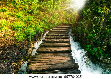 wooden walkway above river rapids in a forest, plitvice lakes national park #657704035