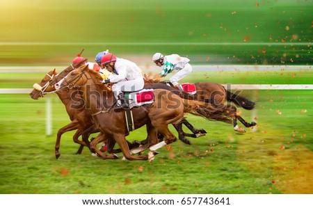 Race horses with jockeys on the home straight. Shaving effect. Royalty-Free Stock Photo #657743641