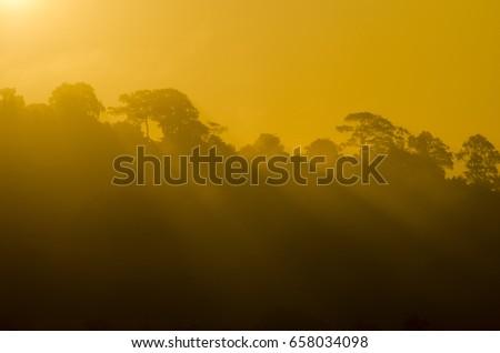 View of the natural sunset ,Phu Khieo Wildlife Sanctuary,beautiful nature sunset #658034098