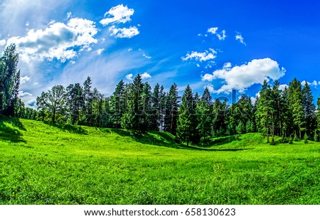 Summer green nature forest hill panoramic landscape #658130623