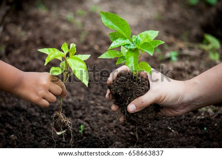 Child and parent hand planting young tree on black soil together as save world concept #658663837