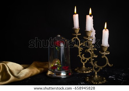 Beauty and the Beast Set Royalty-Free Stock Photo #658945828