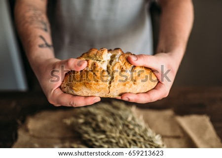 Baker hands breaks in half fresh baked bread loaf #659213623