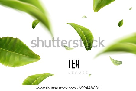 vividly flying green tea leaves, white background 3d illustration Royalty-Free Stock Photo #659448631