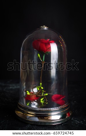 Beauty and the Beast Set Royalty-Free Stock Photo #659724745