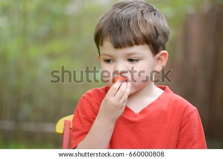 Little boy eating strawberry. Child eats strawberry in garden #660000808