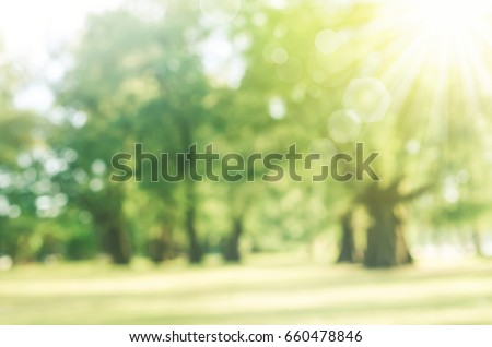 Blur park with sun light abstract background.  #660478846
