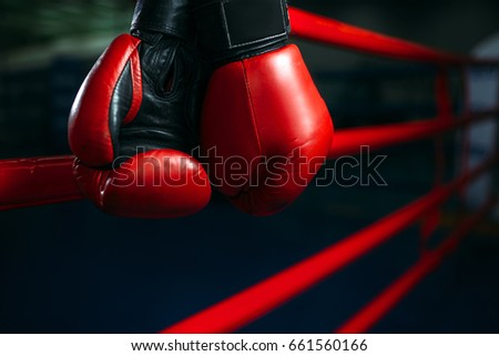 Gloves on the ring ropes, boxing concept, nobody Royalty-Free Stock Photo #661560166