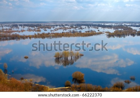 many trees in water-meadow, view from above #66222370