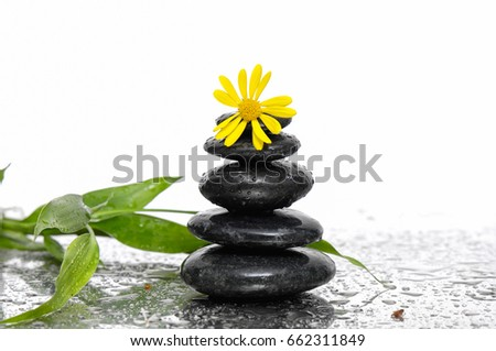 stacked black stones and bamboo leaf with yellow gerbera flower on wet background #662311849