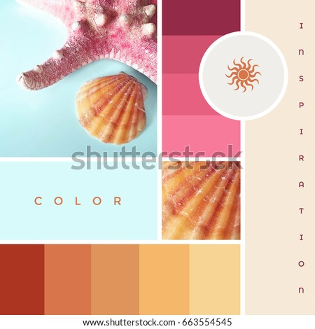 Creative colorful summer theme mood board with starfish, seashell and inspiring color gradients in red, blue and pink hues