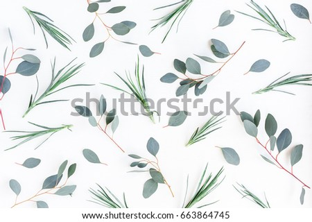 Flowers composition. Pattern made of carnation flowers and eucalyptus branches on white background. Flat lay, top view #663864745