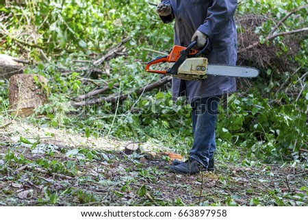 Man holding mechanical power-driven cutting tool (chainsaw)  #663897958
