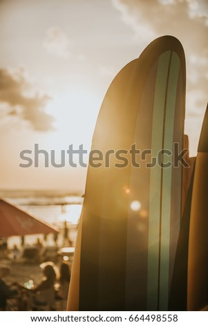 Surfing Themed Photo #664498558