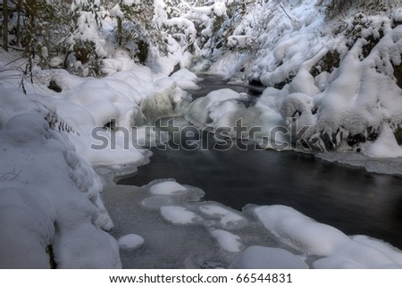Roetenbach gorge, Black Forest, Germany #66544831