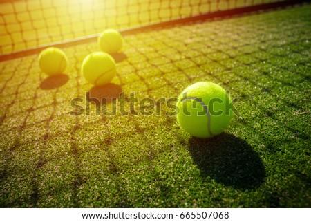 soft focus of tennis ball on tennis grass court with sunlight #665507068