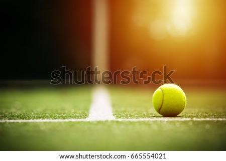 soft focus of tennis ball on tennis grass court with sunlight #665554021