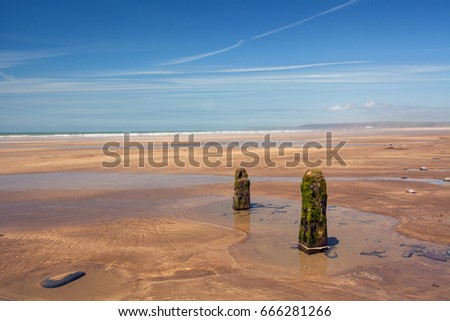 Weathered Beach groynes Royalty-Free Stock Photo #666281266