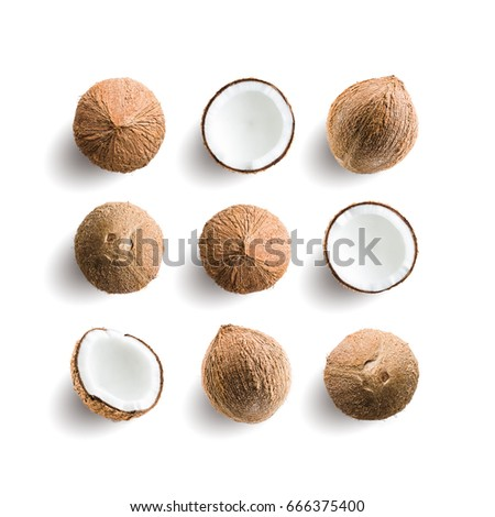 Seamless pattern with tropical fruit. Coconut isolated on white background. Collection #666375400
