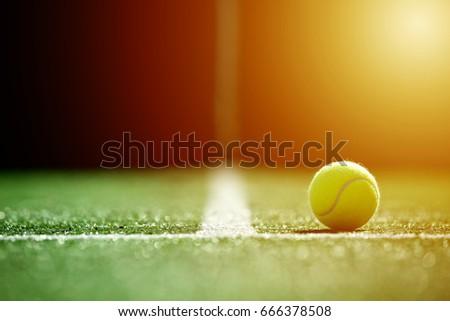 soft focus of tennis ball on tennis grass court with sunlight #666378508