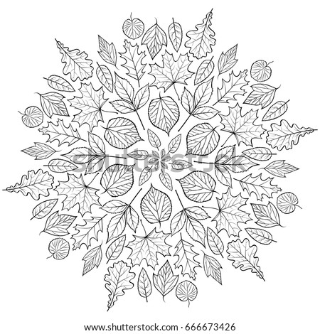 Autumn mandala with autumn leaves on white background. Coloring page for children and adult. Vector illustration.