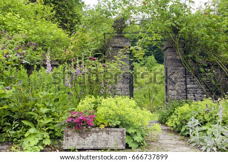 English cottage garden with stone wall rose arch gate, and colourful summer flowers in bloom . #666737899