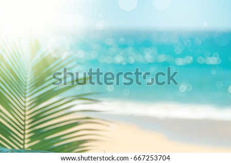 Blur beautiful nature green palm leaf on tropical beach with bokeh sun light wave abstract background.   #667253704