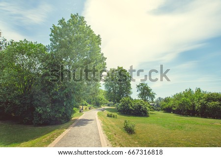 Track in the park in bright sunny weather in summer #667316818