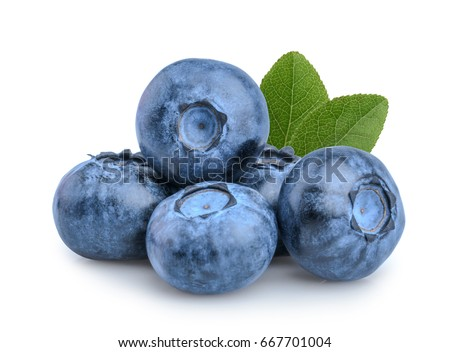 Blueberries isolated on white background #667701004