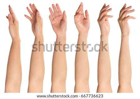 Collage of woman hands on white backgrounds Royalty-Free Stock Photo #667736623