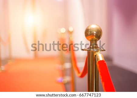 Red carpet between rope barriers in the party