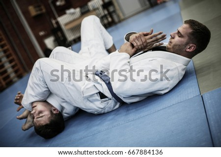 Two young males practicing judo together. Royalty-Free Stock Photo #667884136