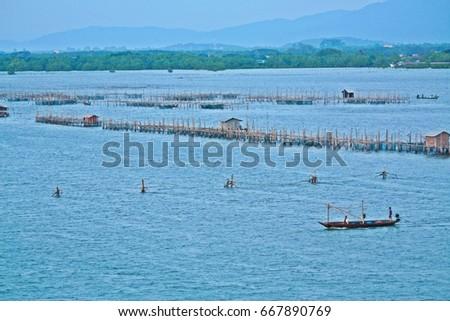 Sunrise Fish farms, Fish cages at The estuary Laem-Sing #667890769