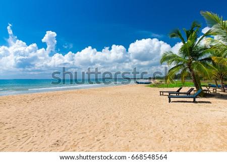 Untouched tropical beach in Sri Lanka #668548564