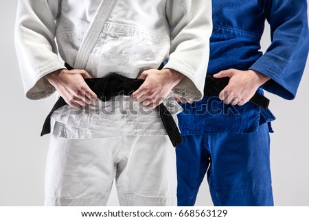 The two judokas fighters posing at studio Royalty-Free Stock Photo #668563129
