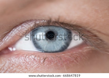 Blue human eye. Beauty macro closeup woman's eye blinking #668647819