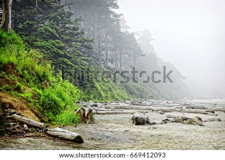 The rugged Oregon coast at the Arcadia State Recreation Site (one mile south of Cannon Beach) lies still in the heavy morning fog and mist of the pacific northwest. #669412093