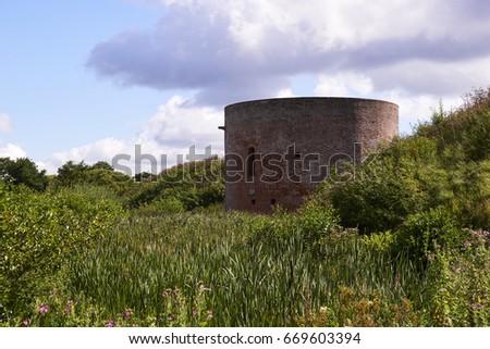 landscape around Hald Ruin near Hald Lake in Denmark                  #669603394