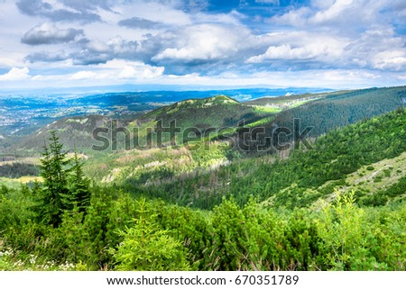 Evergreen forest on green hills in Tatra Mountains, landscape, Poland #670351789