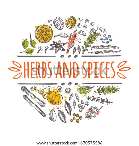 Herbs and spices concept design. Round circle composition. Hand drawn vector illustration. Can be used for festival, menu, cafe, restaurant, bar, poster, banner, emblem, sticker, placard. Royalty-Free Stock Photo #670575586